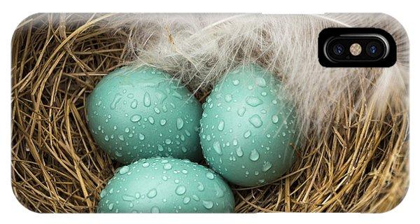 Wet Trio Of Robins Eggs IPhone Case