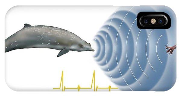 Squid iPhone Case - Whale Sonar by Mikkel Juul Jensen