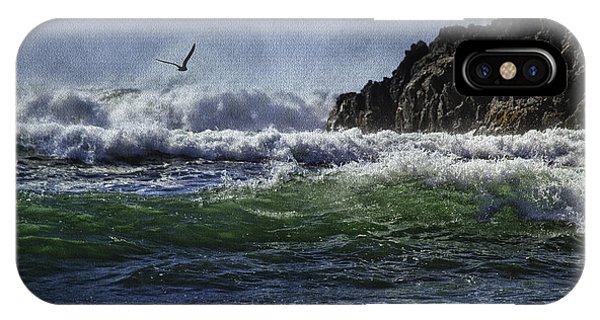 Whales Head Beach Southern Oregon Coast IPhone Case