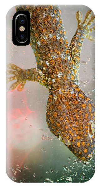 What If Tom Cruise Was A Gecko IPhone Case