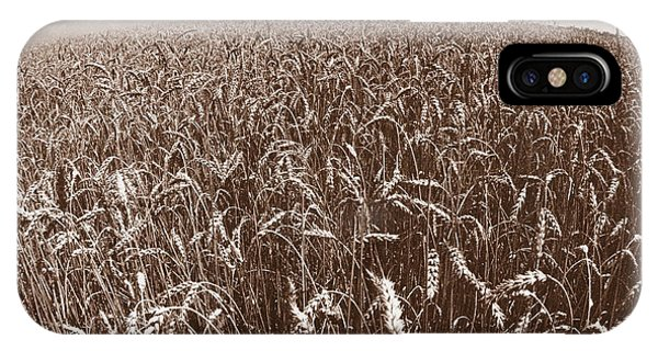 Wheat Fields Forever IPhone Case