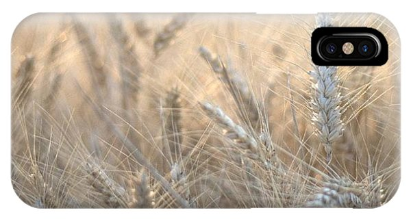 Beautiful iPhone Case - #wheat #france #rsa_ladies #rsa_nature by Georgia Fowler