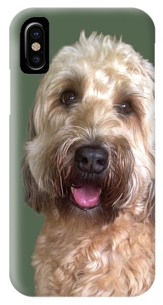 IPhone Case featuring the photograph Wheaton Terrier by Karen Zuk Rosenblatt