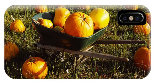 Half Moon Bay iPhone Case - Wheelbarrow In Pumpkin Patch, Half Moon by Panoramic Images