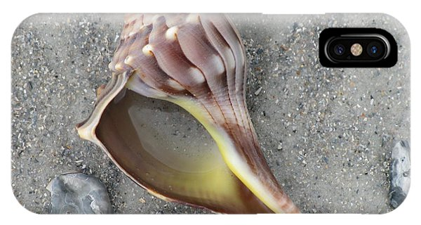 Whelk With Sand IPhone Case