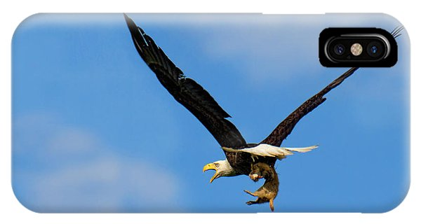 When Dogs Fly IPhone Case