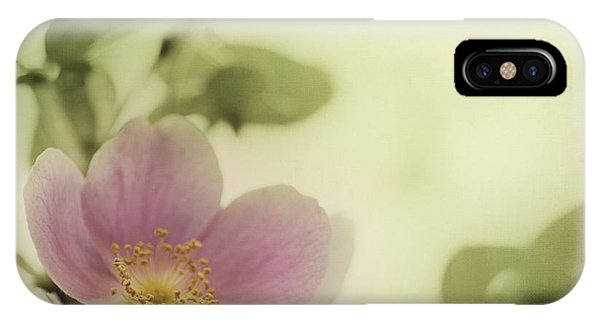 Scent iPhone Case - Where The Wild Roses Grow by Priska Wettstein