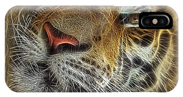 Whiskers Of The Tiger IPhone Case