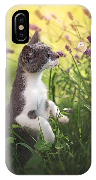 Pet iPhone Case - Whispering.. by Dejana M??