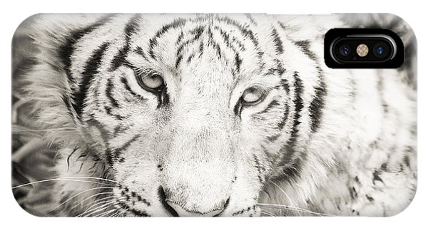 White Tiger IPhone Case