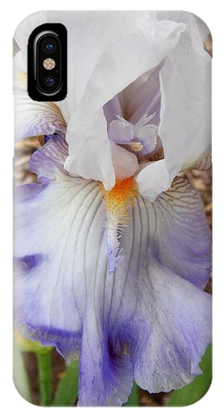 White And Blue Iris Phone Case by Virginia Forbes
