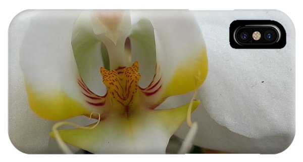 White And Yellow Orchid IPhone Case