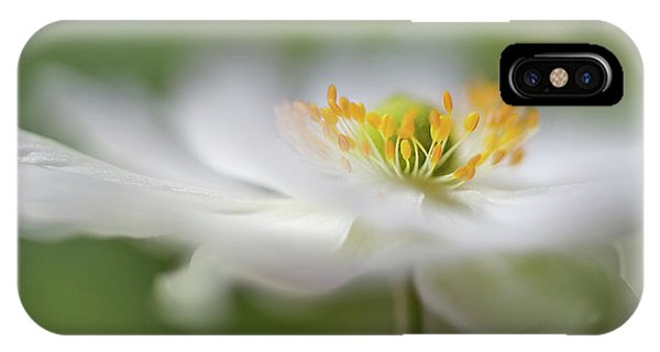 Soft iPhone Case - White Anemone by Mandy Disher