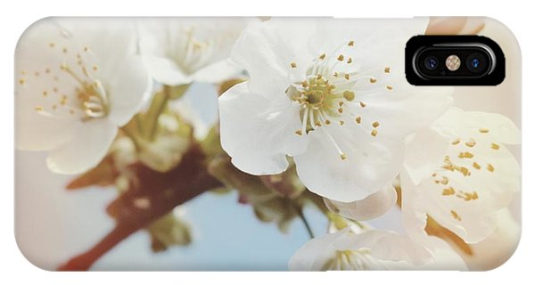 Orange iPhone Case - White Apple Blossom In Spring by Matthias Hauser
