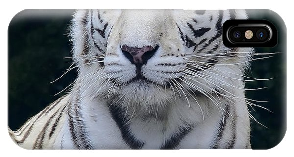 Blue Eyed White Bengal Tiger IPhone Case