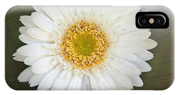 White Bergera Daisy 1 IPhone Case