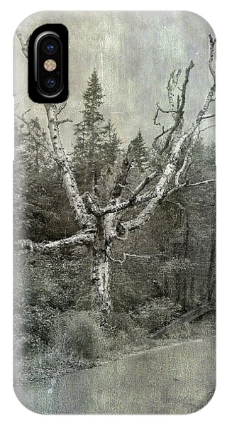 White Birch Last Statement  IPhone Case