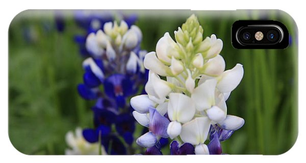 White Bluebonnet IPhone Case