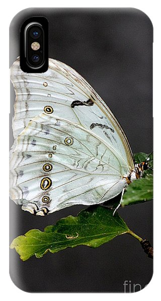 IPhone Case featuring the photograph White Butterfly by Jeremy Hayden