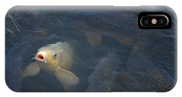 White Carp In The Lake IPhone Case