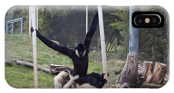 White-cheeked Gibbon - 0003 IPhone Case