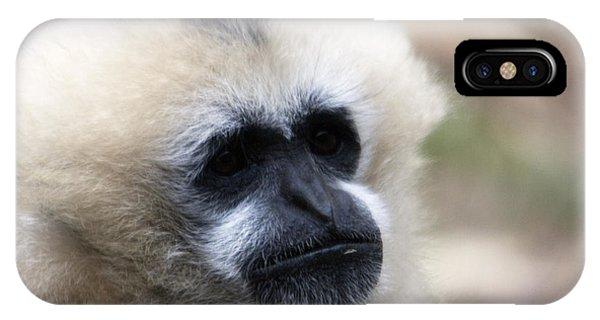 White-cheeked Gibbon - 0010 IPhone Case
