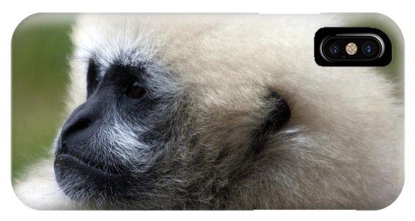White-cheeked Gibbon - 0011 IPhone Case