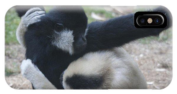 White-cheeked Gibbon - 0013 IPhone Case