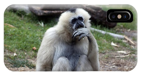 White-cheeked Gibbon - 0015 IPhone Case