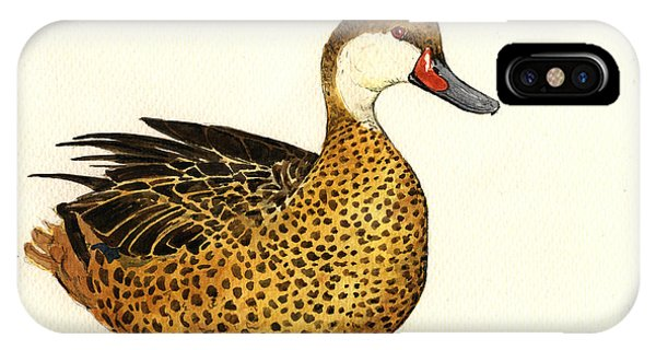 Bird Watercolor iPhone Case - White Cheeked Pintail by Juan  Bosco