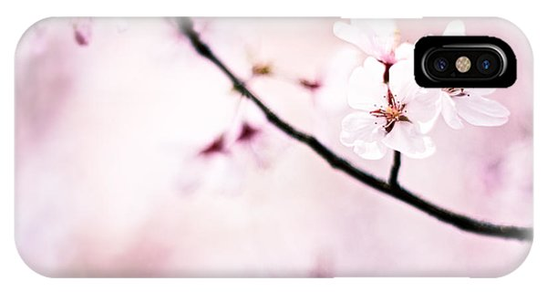 White Cherry Blossoms In The Sunlight IPhone Case