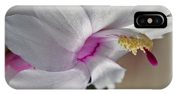 White Christmas Cactus IPhone Case