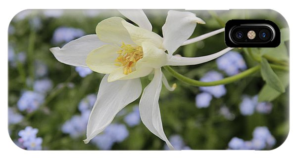 White Columbine IPhone Case