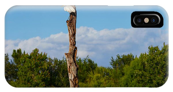 Boynton iPhone Case - White Crane On A Dead Tree, Boynton by Panoramic Images