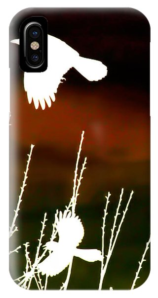 White Crow And The Bluejay IPhone Case