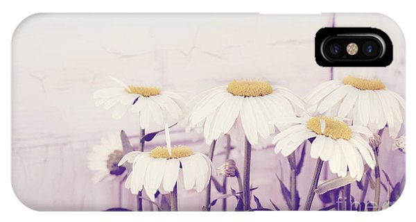 White Daisy Mums IPhone Case