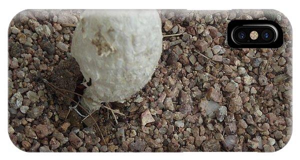 White Desert Mushroom IPhone Case