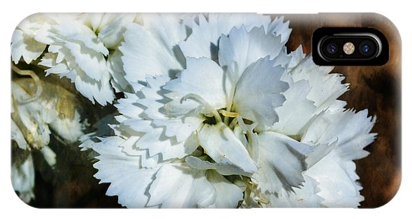 White Dianthus IPhone Case
