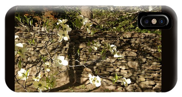 White Dogwood At The Stone Wall IPhone Case