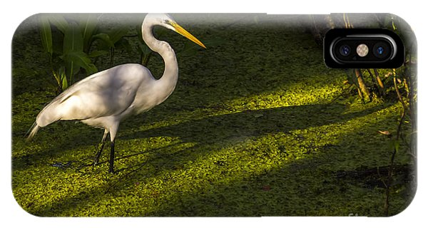 Egrets iPhone Case - White Egret by Marvin Spates