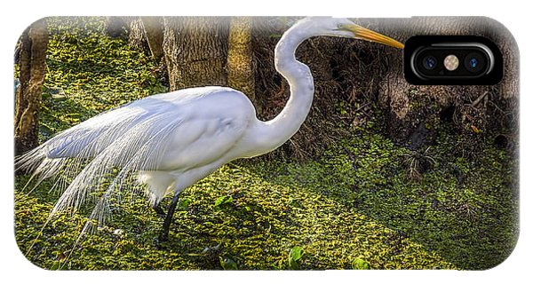 Egrets iPhone Case - White Egret On The Hunt by Marvin Spates