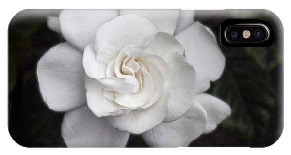 White Gardenia IPhone Case