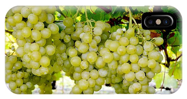White Grapes IPhone Case