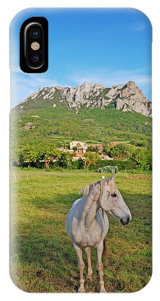 White Horse Dreaming IPhone Case