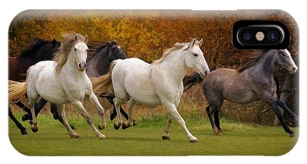 White Horse Vale Lipizzans IPhone Case