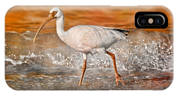 Ibis iPhone Case - White Ibis Stroll by Betsy Knapp