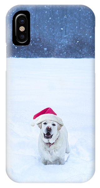 Yellow Lab iPhone Case - White Lab Christmas by Diane Diederich