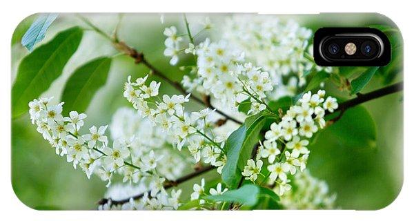 Twig iPhone Case - White Lilac by Nailia Schwarz