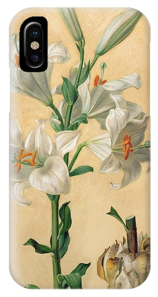 Amaryllis iPhone Case - White Lily by Carl Franz Gruber