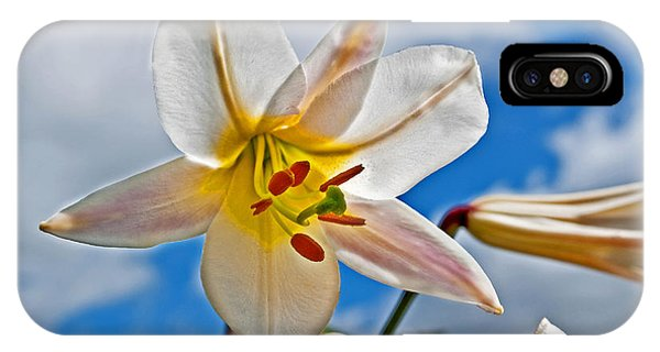 White Lily Flower Against Blue Sky Art Prints IPhone Case